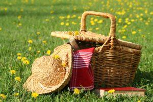 pikniku korv